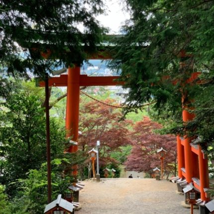 tokyo séjour jeune 6-18 ans japon