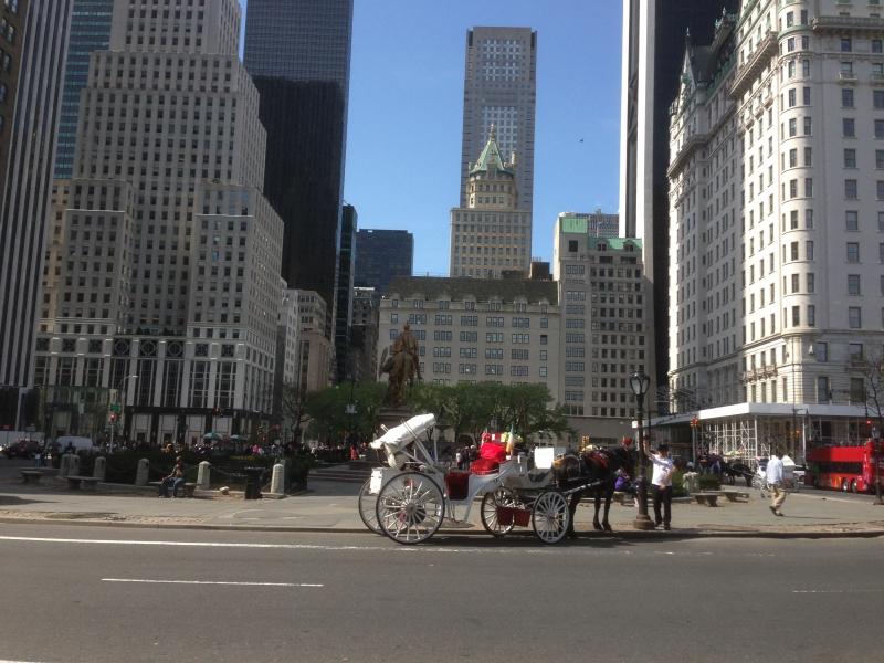 6-18 ans séjour jeune new york hiver